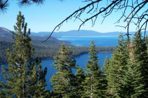 Fallen Leaf Lake and South Lake Tahoe | Pet Friendly Hiking in South Lake Tahoe