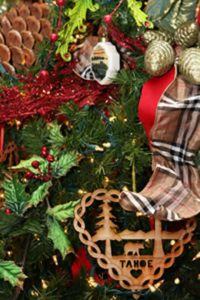 South Lake Tahoe Events | Festival of Trees and Lights 2011 | Winter Activities